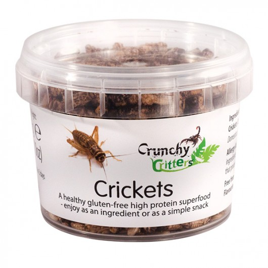 Crickets - 20g