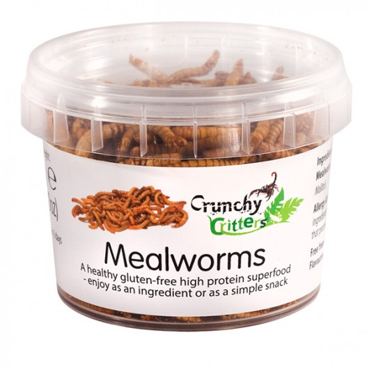 Mealworms - 20g