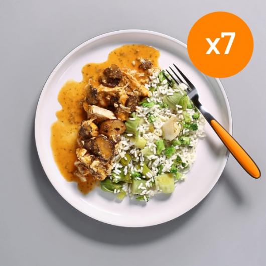 7x Chicken Stroganoff