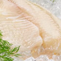 Frozen Tilapia Fillets - 1kg ****