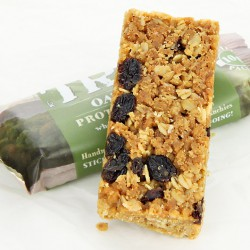 Trek Oat & Raisin Flapjack - 50g