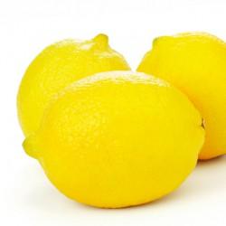 Lemons - 3 Pack ***DELISTED***