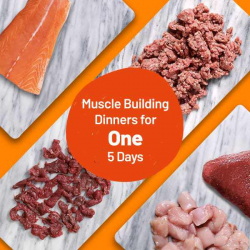 Muscle Building Dinners For One - Meats For 5 Meals