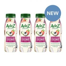 4 x Coconut & Berry Seed & Fruit Dairy Free Smoothies
